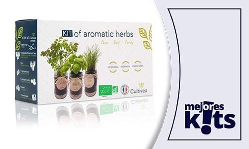 Los Mejores Kits De Cultivo - Comparativa, Análisis y Ranking Calidad-Precio